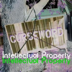 Intellectual Property Album Art